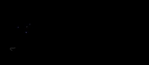 Schulmerch_Logo_2.5_black